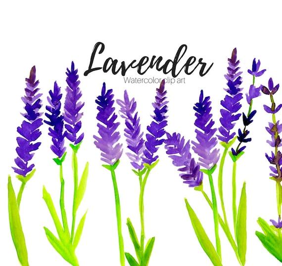 lavender clipart floral clipart scent clipart flower rh etsy com lavender clipart free lavender clipart images