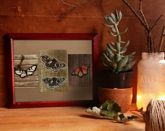 Wings, art print collage, monarch butterfly, emperor moth, boho decor, insects illustration, nature inspired art, rustic woodland,entomology