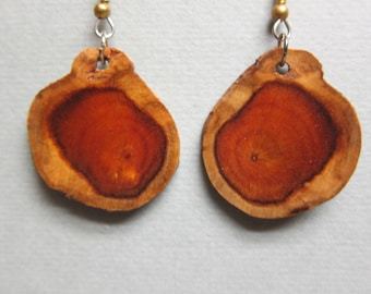Natural Shape Norfolk Island Exotic Wood small Earrings, Handcrafted by ExoticWoodJewelryAnd Hypoallergenic wires