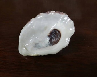 Oyster Shell Jewelry Dish Party Favor