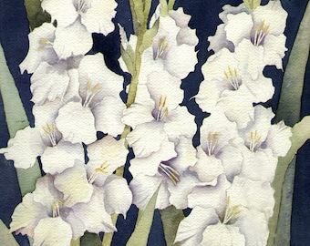 Gladiolus Watercolor Painting, White Gladioluses Matted Art print for home decor wall art