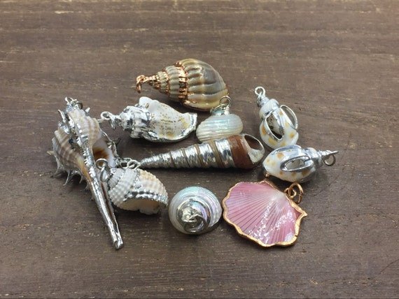 10pcs tiny sea shell pendants wholesale real sea shell charm conch 10pcs tiny sea shell pendants wholesale real sea shell charm conch pendant beach jewelry supplies random set from stunninggem on etsy studio aloadofball Image collections