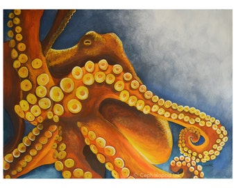 Octopus Watercolor Art Print 8x10