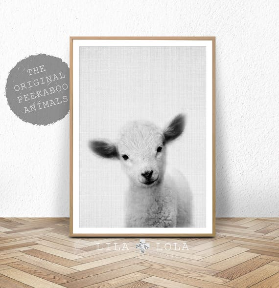 Lamb Print, Baby Sheep Wall Art, Nursery Animal, Digital Download, Farm Decor, Printable Farmhouse Sheep, Large Poster, Black and White