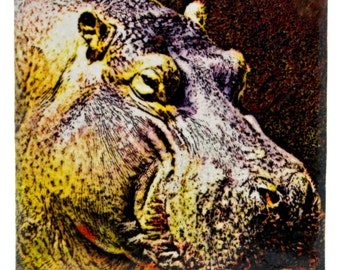 "Yellow Hippo 4"" Coaster and Art Tile"