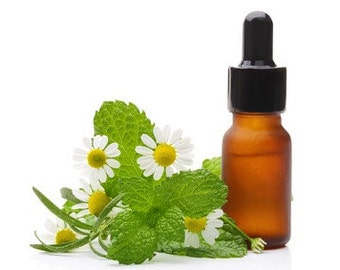 Andrographis Tincture 1 oz.