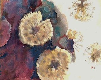 Flower Painting - original watercolor dandelion heads