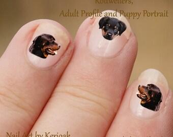 Rottweiler Nail Art, hond Nail Art Stickers, Rottweiler Nail Stickers, stickers, vingernagel Stickers, volwassen pup profiel portret