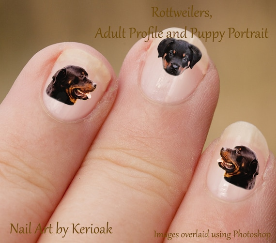Rottweiler Nail Art, Dog Nail Art Stickers, Rottweiler Nail Stickers,  Fingernail Stickers, adult puppy profile portrait, decals from Kerioak on  Etsy Studio - Rottweiler Nail Art, Dog Nail Art Stickers, Rottweiler Nail Stickers