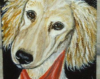 Saluki Dog Aceo Original Mini Painting 3.5 x 2.5 OOAK
