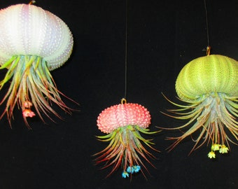 Hanging Air plant, SET of 3, air plant holder, air plant jellyfish, hanging planter, hanging jellyfish, house plants, Sea Urchin Jelly fish
