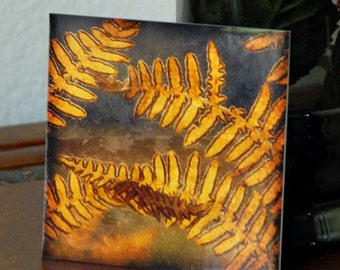 Fern Photograph Golden Ferns Autumn Photo 5x5 Mini-Photo Print