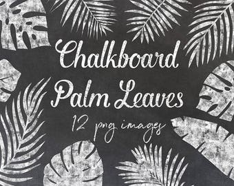 Chalkboard Palm Leaves Clipart, Exotic Chalkboard Clipart, 12 PNG Separate Elements, For Scrapbooking, Invites Or Card Making, BUY5FOR8