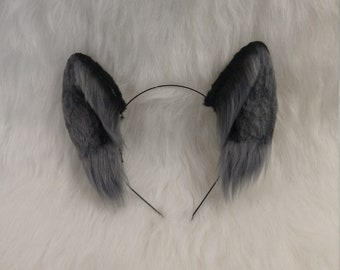 Black and Grey Wolf Pup Ears