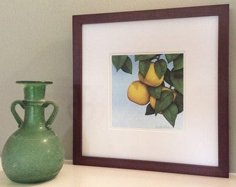 Grapefruit Signed Archival Print from Original Watercolor