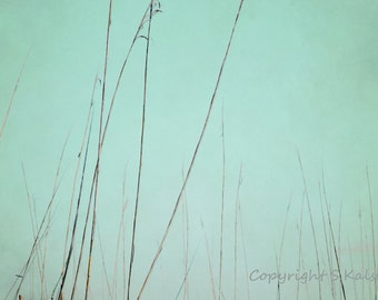 Swamp Reeds Photograph Nature Abstract Lines Dreamy Meditative Print Brown Yellow Mint Green Wall Decor 8x12