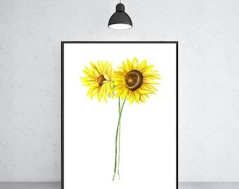Sunflower art print sunflower  painting, Flower painting, Floral art print, Botanical art