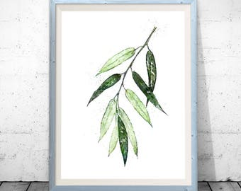 Eucalyptus Print, Botanical Art Prints, Green Leaves Wall Decor, Living Room, Kitchen Botanical Poster, Minimalist Modern Illustration