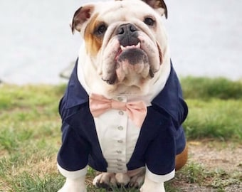 Navy blue dog tuxedo with blush bow tie Dog wedding attire Formal dog suit Swallow-tailed dog coat Birthday dog costume Custom dog tux