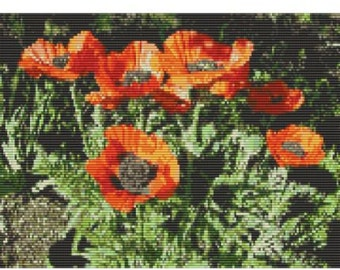 Poppies In My Garden, bead pattern for loom or peyote