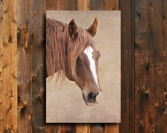 Shy One - Horse Photography - Horse art - Horse decor - Red horse photography - Animal photography - Horse wall art - Equine decor.