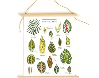 House Plants Canvas Banner Chart