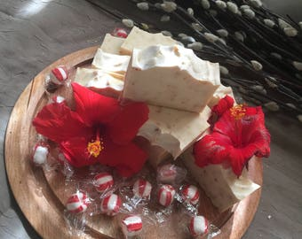 Organic Peppermint, Hibiscus Fresh Ginger Soap