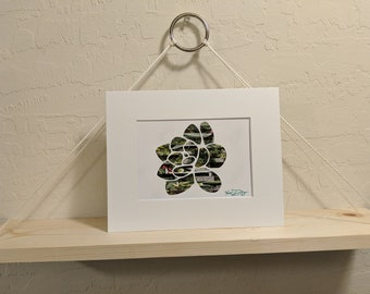 Succulent C Recycled Magazine Wall Art