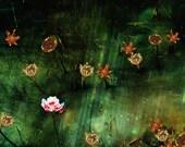November, Mystical Floral...