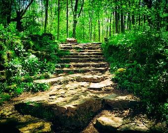 Steps to Serenity