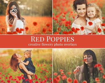 """Poppies photo overlays """"Red Poppies"""",  shooting through the poppies photo overlays, digital photo overlays for Photoshop, flowery overlays"""
