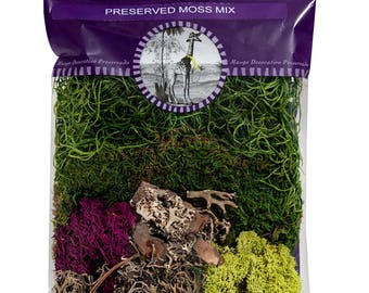 Super Moss Mix Preserved 2 Ounce, Moss Filler For Dried Or Artificial Floral Arrangements, Mix Moss For Floral Soil Covering For Live Plants