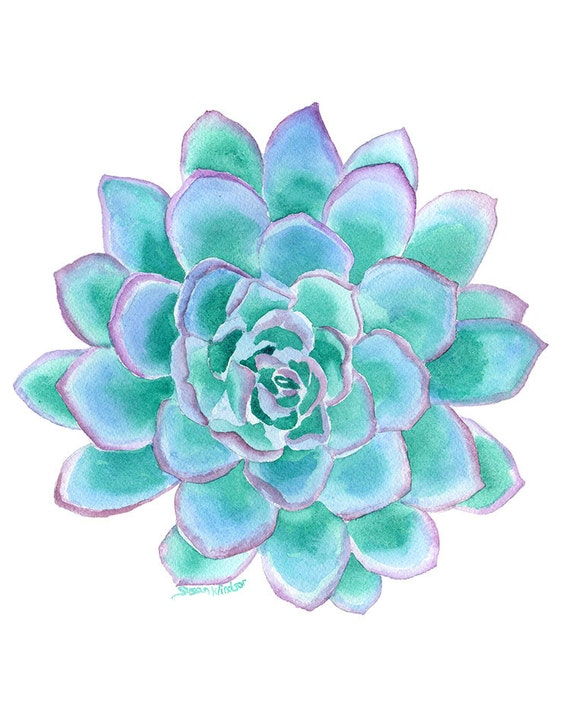 Teal Succulent Watercolor Painting 8 X 10 8 5 X 11