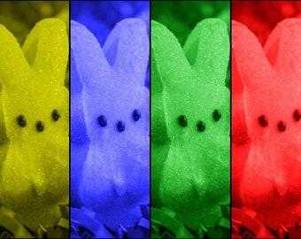 Easter Peeps Art Photography