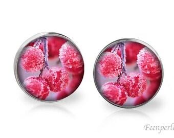 Stud Earrings Frosted 4