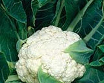 Cauliflower Seeds Non GMO