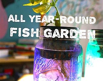 All Year-Round Mason Jar Fish Garden (Quart Size)