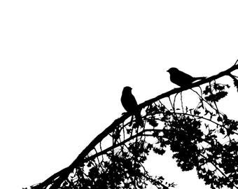 Valentine's Day Love Anniversay Wedding Birds Minimalist Black and White Silhouette - 5 x 7 art print by Dawn Smith