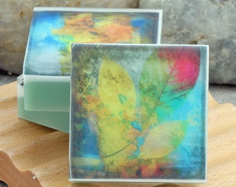 Graphic Art Soap Colorful Botanicals IV - Set of 3 Guest Size Square in a Woodland Breeze Scent