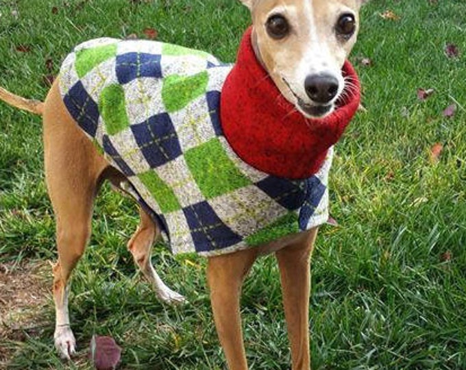 "Italian Greyhound Sweater. ""Uncle Hairy's Stinky Sweater"" - Italian Greyhound Sizes"