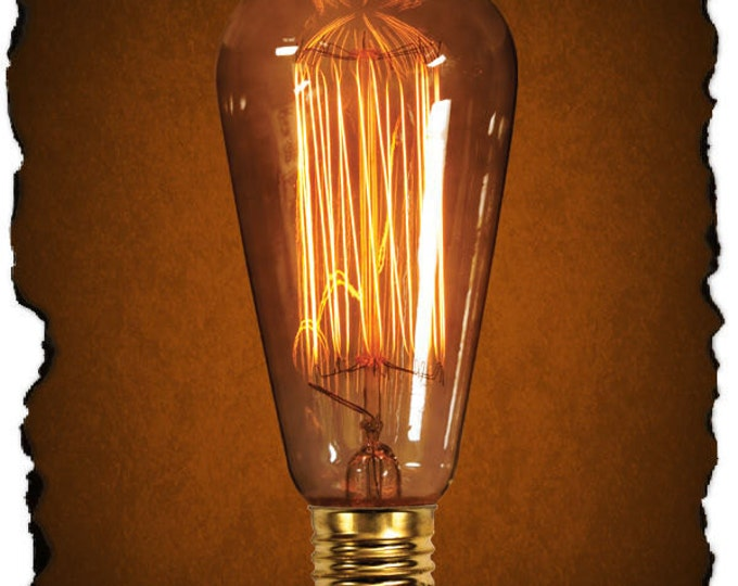 60 Watt Edison Bulb We Use In Our Photos, For Fixture Customers Only