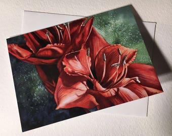 I'm Alive Red Amaryllis Note Card Set