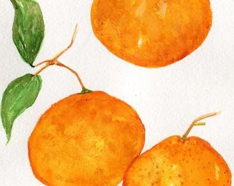 Mandarin Oranges painting,  Watercolors Paintings original 5 x 7 Citrus wall art, original watercolor painting of oranges, kitchen decor