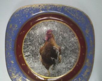 "Decorative tarelka""Ljubopytnyj cockerel"