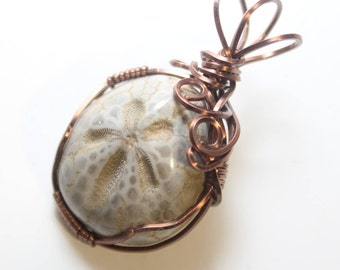 Mini Fossilized Sand Dollar Wire Wrapped Copper Plated Wire Necklace Pendant