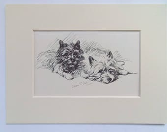 "Highland Terriers Scottie dog print by Lucy Dawson dated 1935 in 6""x8"" mount ready to frame"