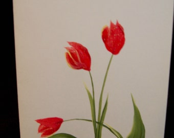 Hand Painted Tulip Note Card Set of 12