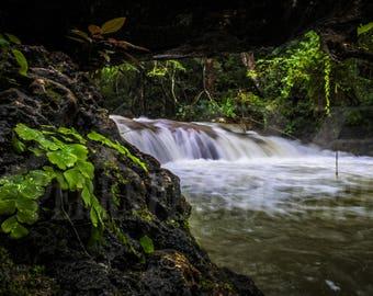 Jungle River Oaxaca, Mexico photograph