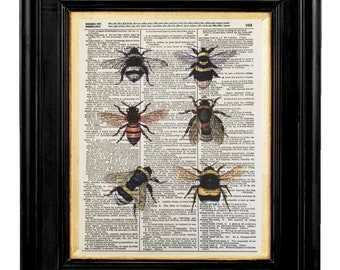 Honey Bees,  Honey Bee Art,Honey Bee, Collage Mixed Media, 8x10 Vintage Dictionary Page Art Prints, Honey Bee Pictures, Bees, Bee Print