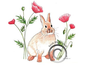 Instant Download, Colouring Page, Bunny Rabbit, Poppies, Poppy Flowers Coloring Page, Coloring Sheet Kids Arts & Crafts, Printable